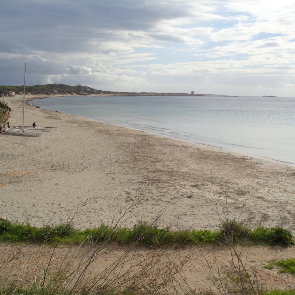 avantcaribiza.com ses salines playa ibiza
